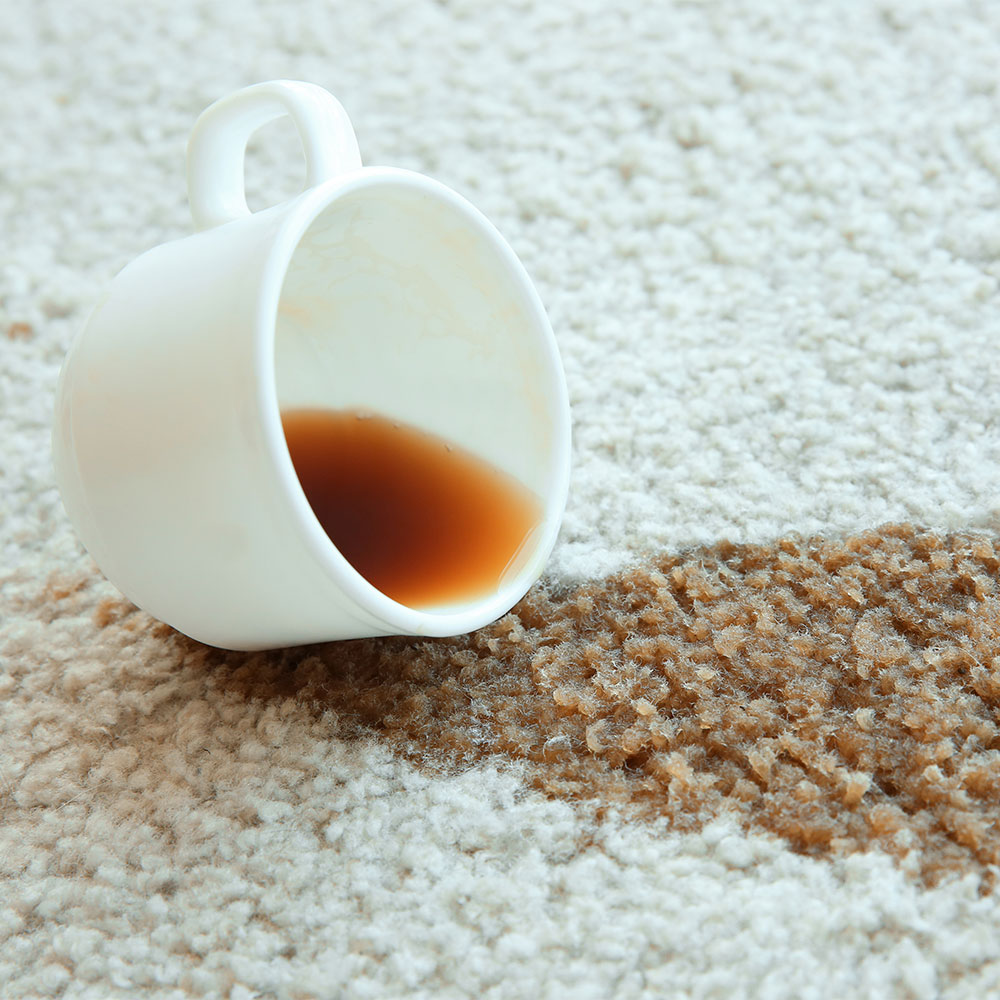 Food stains on carpet