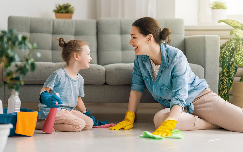 Britex cleaning solutions